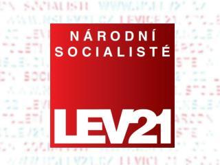 Programové cíle v sociální oblasti
