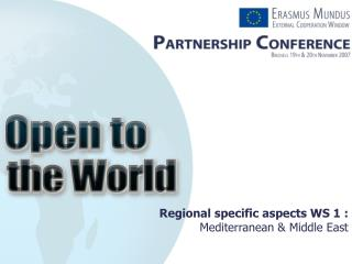 Regional specific aspects WS 1 : Mediterranean & Middle East