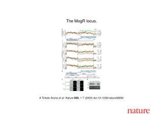 A Toledo-Arana  et al.  Nature 000 , 1- 7  (2009) doi:10.1038/nature080 80