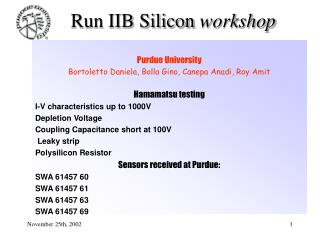 Run IIB Silicon  workshop