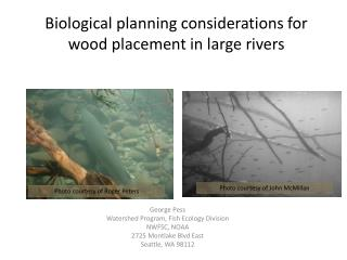 Biological planning considerations for wood placement in large rivers