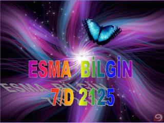 ESMA  BİLGİN  7/D 2125