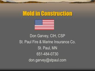 Mold in Construction
