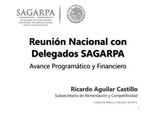 Reunión Nacional con Delegados SAGARPA Avance Programático y Financiero