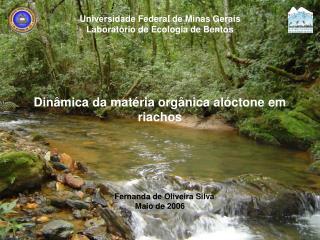Universidade Federal de Minas Gerais Laboratório de Ecologia de Bentos