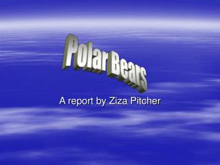 A report by Ziza Pitcher