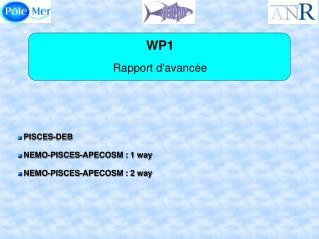 WP1 Rapport d'avancée