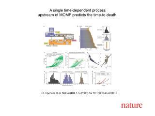 SL Spencer  et al. Nature 000 , 1-5 (2009) doi:10.1038/nature08012