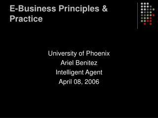 E-Business Principles & Practice