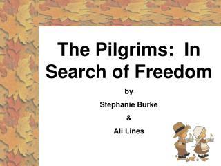 The Pilgrims:  In Search of Freedom by Stephanie Burke  Ali Lines