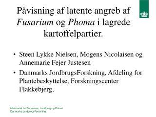 Påvisning af latente angreb af  Fusarium  og  Phoma  i lagrede kartoffelpartier.