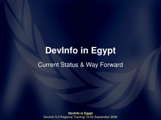 DevInfo in Egypt