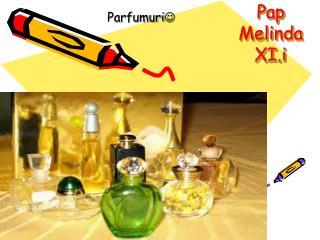 Pap Melinda     XI.i