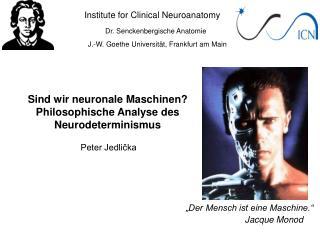 Institute for Clinical Neuroanatomy