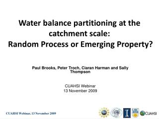 Water balance partitioning at the catchment scale:  Random Process or Emerging Property?