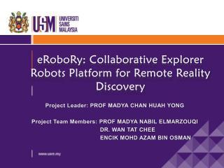 eRoboRy: Collaborative Explorer Robots Platform for Remote Reality Discovery