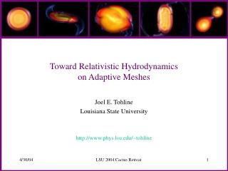 Toward Relativistic Hydrodynamics  on Adaptive Meshes