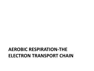 Aerobic respiration-the electron transport chain