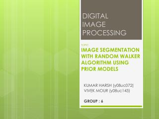 TOPIC IMAGE SEGMENTATION WITH RANDOM WALKER ALGORITHM USING PRIOR MODELS
