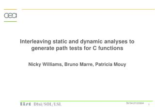 Interleaving static and dynamic analyses to generate path tests for C functions