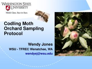 Codling Moth Orchard Sampling Protocol