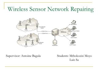 Wireless Sensor Network Repairing