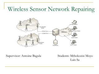 Wireless Sensor Network Repairing