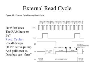 External Read Cycle