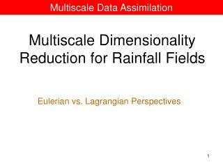 Multiscale Data Assimilation