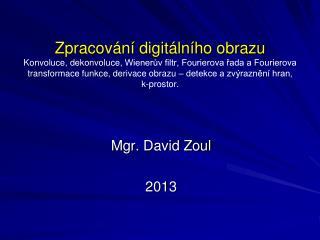 Mgr. David Zoul 2013
