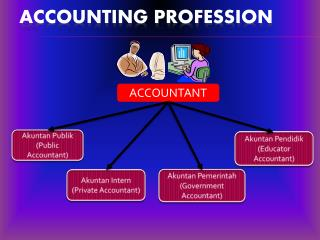 Accounting profession