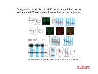 MR Warden  et al.  Nature 492 , 482-432 (2012) doi:10.1038/nature11617
