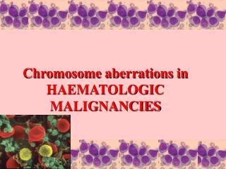 Chromosome aberrations in HAEMATOLOGIC MALIGNANCIES