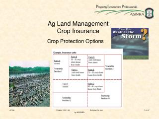 Ag Land Management Crop Insurance