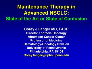 Maintenance Therapy in Advanced NSCLC:   State of the Art or State of Confusion