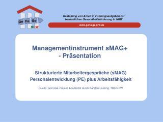 Managementinstrument sMAG - Pr sentation