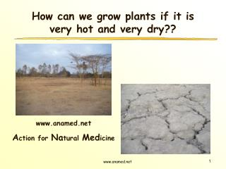 How can we grow plants if it is very hot and very dry??