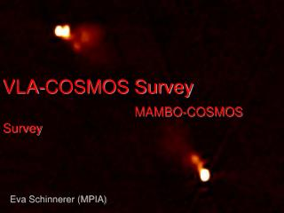 VLA-COSMOS Survey MAMBO-COSMOS Survey
