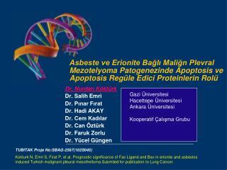 Dr. Nurdan Köktürk Dr. Salih Emri Dr. Pınar Fırat Dr. Hadi AKAY Dr. Cem Kadılar Dr. Can Öztürk