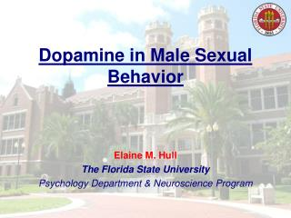 Dopamine in Male Sexual Behavior