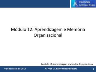 Módulo 12: Aprendizagem e Memória Organizacional