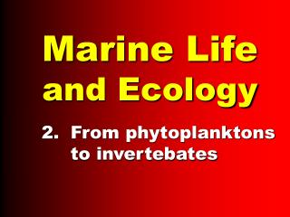 Marine Life and Ecology