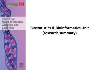 Biostatistics & Bioinformatics Unit (research summary)