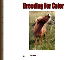 Breeding For Color