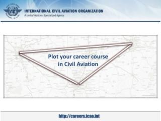 Career structures in N.America