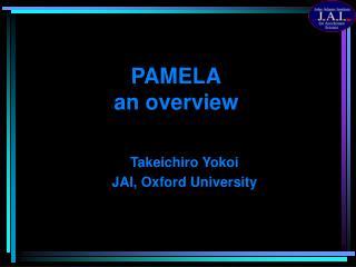 PAMELA an overview