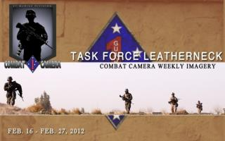 TASK FORCE LEATHERNECK