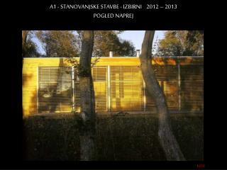 A1 - STANOVANJSKE STAVBE - IZBIRNI    2012 – 2013 POGLED NAPREJ
