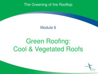 The Greening of the Rooftop Module 6 Green Roofing: Cool & Vegetated Roofs