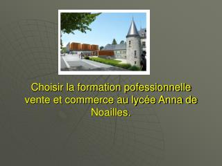 Choisir la formation pofessionnelle vente et commerce au lycée Anna de Noailles.